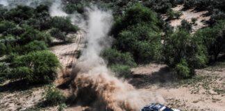 Sainz, Dakar, Peugeot