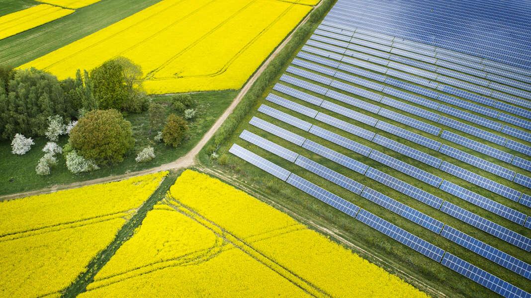 zöld, innovációk